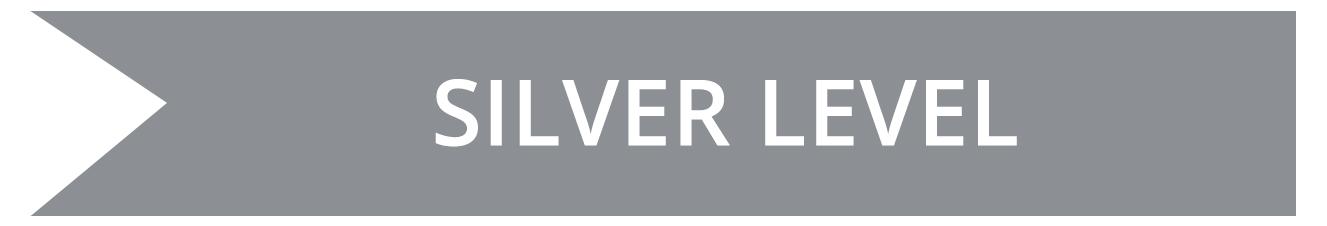 Silver Level